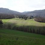 Fields near the house