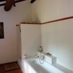 Bathroom - bathtub and shower behind